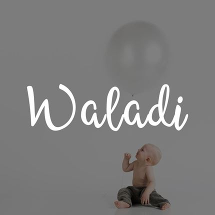Waladi eCommerce Strategy by Web Bridge